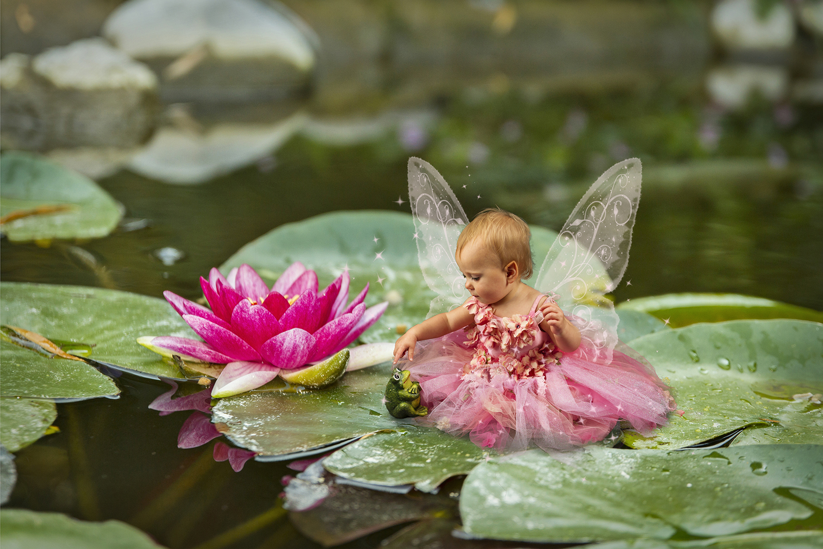 Lily pads christy peterson digital backgrounds for photographers for fairy composite pictures digital fairy wings brushes or overlays izmirmasajfo Images