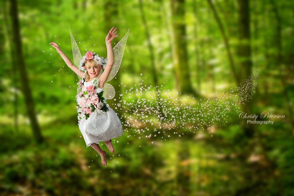 Digital Fairy Wing Brushes And Png Overlays Christy Peterson