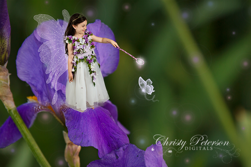 fairy_wing_photoshop_brushes_and_overlays_and_flower_digital_background