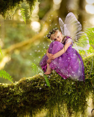 fantasy-fairy-digital-background-and-stock-photos-for-photographers-mossy-branches