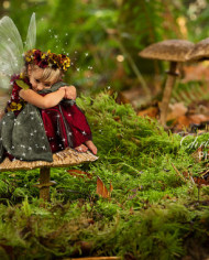 fantasy-fairy-digital-backgrounds-for-photographers-of-mushroom