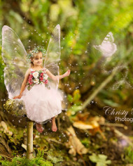 fantasy-fairy-digital-backgrounds-for-photographers-of-mushroom-by-mossy-tree