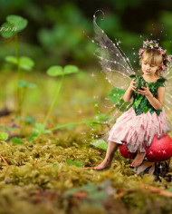 fantasy-fairy-digital-backgrounds-for-photographers-red-mushroom