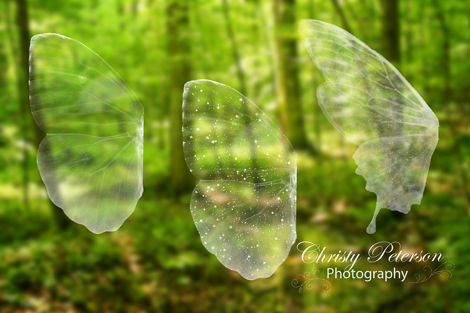 Fairy Wings Png Overlays Set 1 Christy Peterson