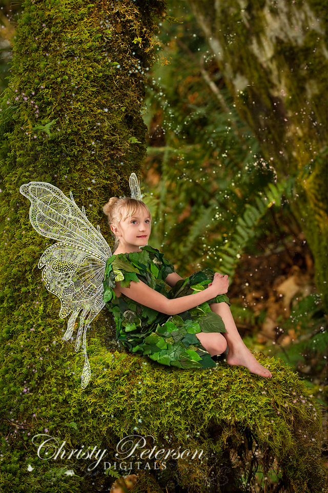photoshop_fairy_wings_brushes_and_composite_digital_background_for_photographers