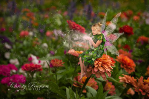 photoshop_fairy_wings_brushes_and_marigold_digital_background_for_photographers
