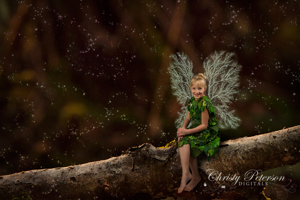 photoshop_fairy_wings_brushes_and_tree_branch_digital_background_for_photographers