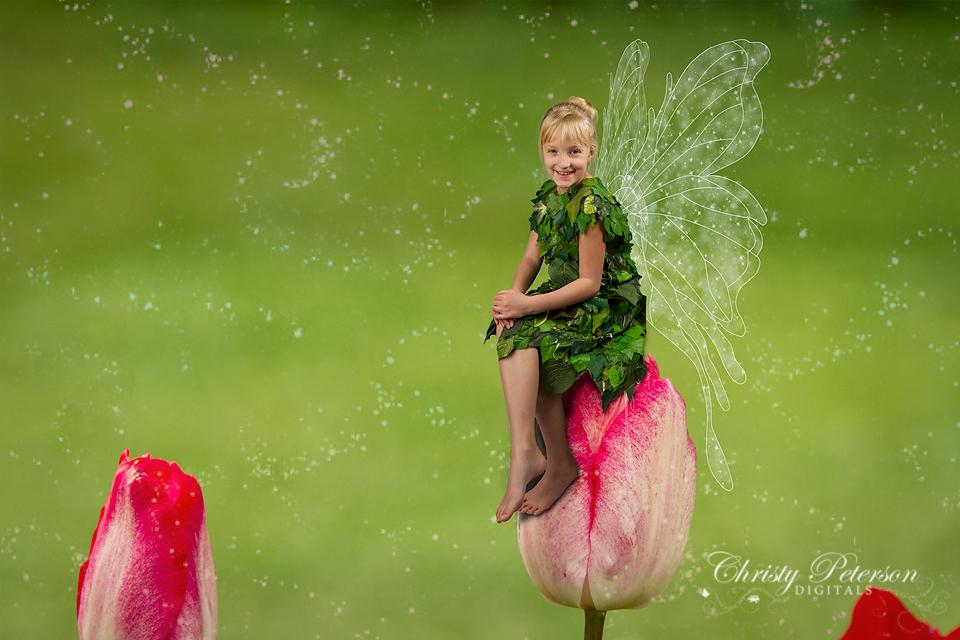 photoshop fairy wing brushes and digital overlays set 2
