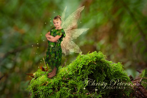 photoshop_fairy_wings_brushes_and_composite_digital_background