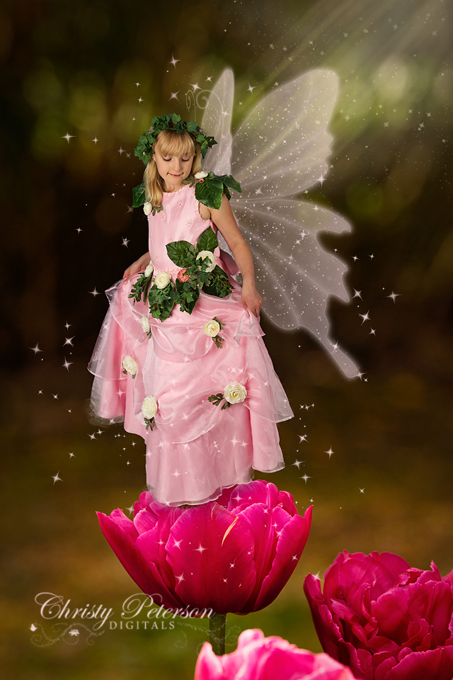pink_tulip_digital_background_for_photographers_and_photoshop_fairy_wings_brushes