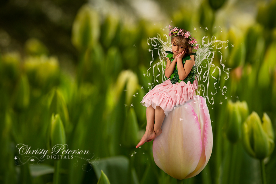 shabby_chic_fairy_wings_Photoshop_brushes