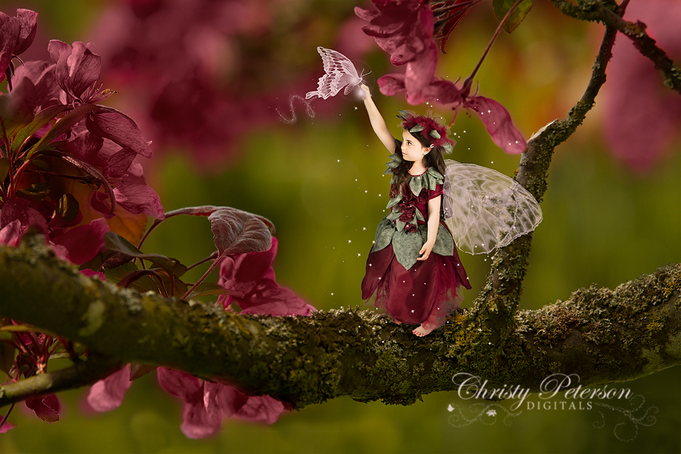 butterfly_fairy_wing_photoshop_brushes_and_digital_background
