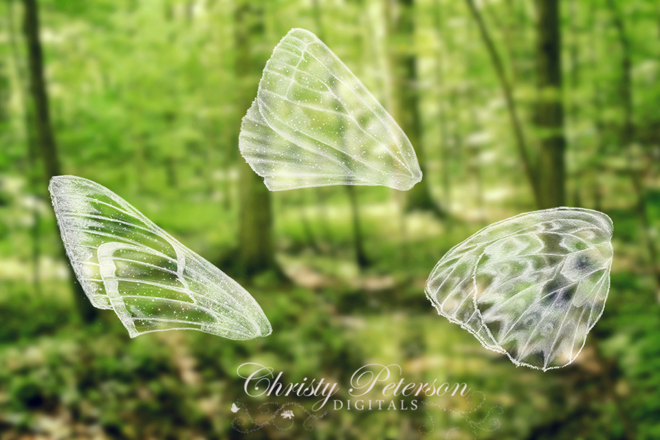 digital_fairy_wings_photoshop_brushes_and_overlays_set_3