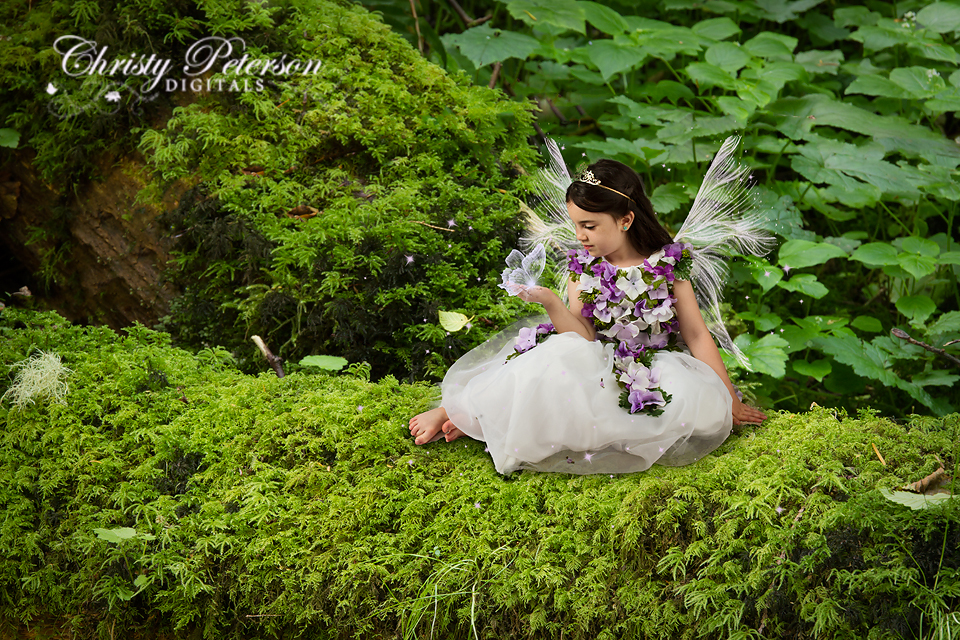 enchanted_woodland_digital_background_for_fairy_compsite_pictures