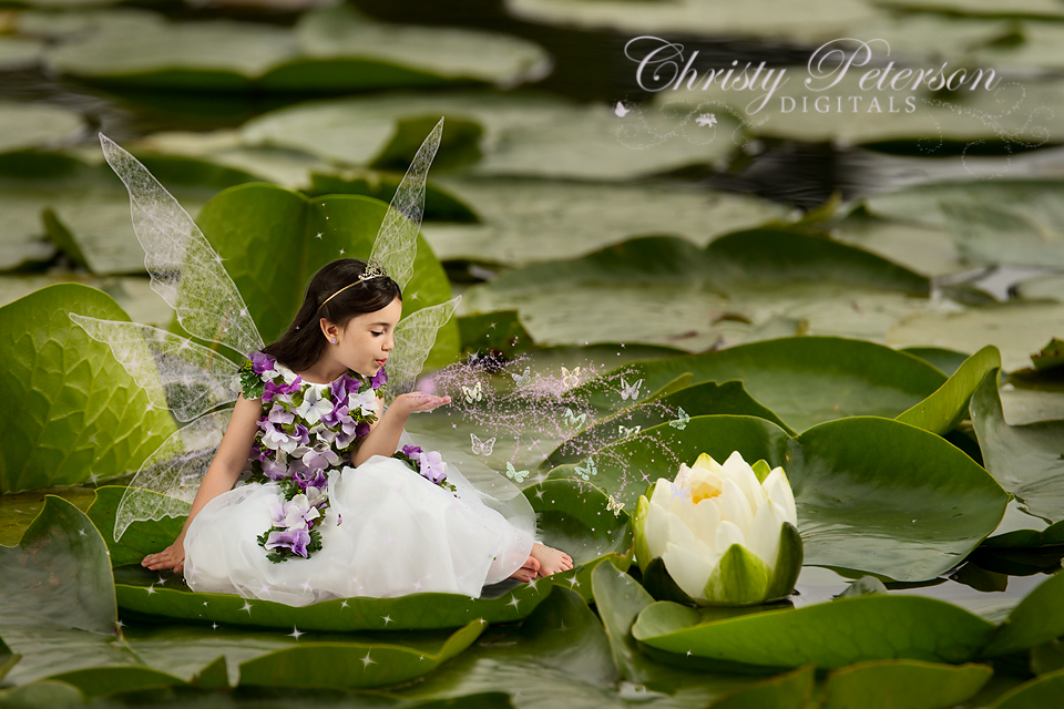 fairy picture on a lily_pad_digital_background