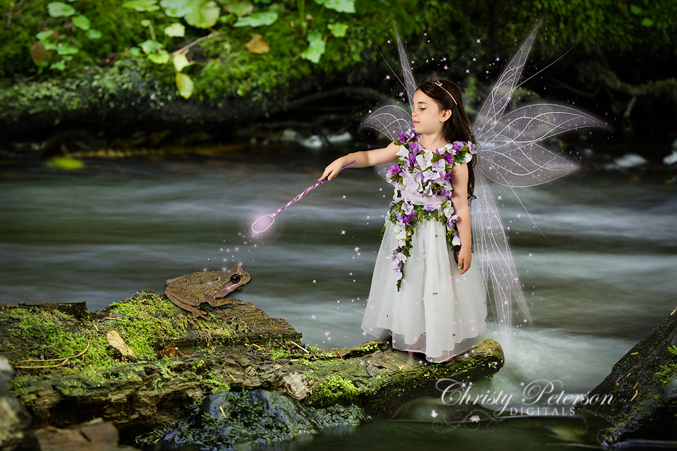 fairy_wing_photoshop_brushes_and_log_in_river_digital_background_for_composites
