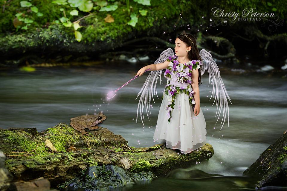 fairy_wing_photoshop_brushes_andr_digital_background