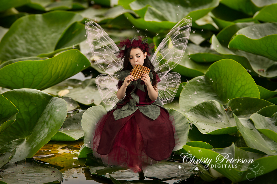 lily_pad_digital_background_for_fairy_pictures