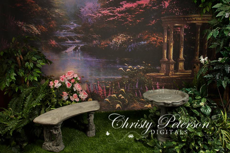 Cinderella Inspired Digital Background And Overlay Set
