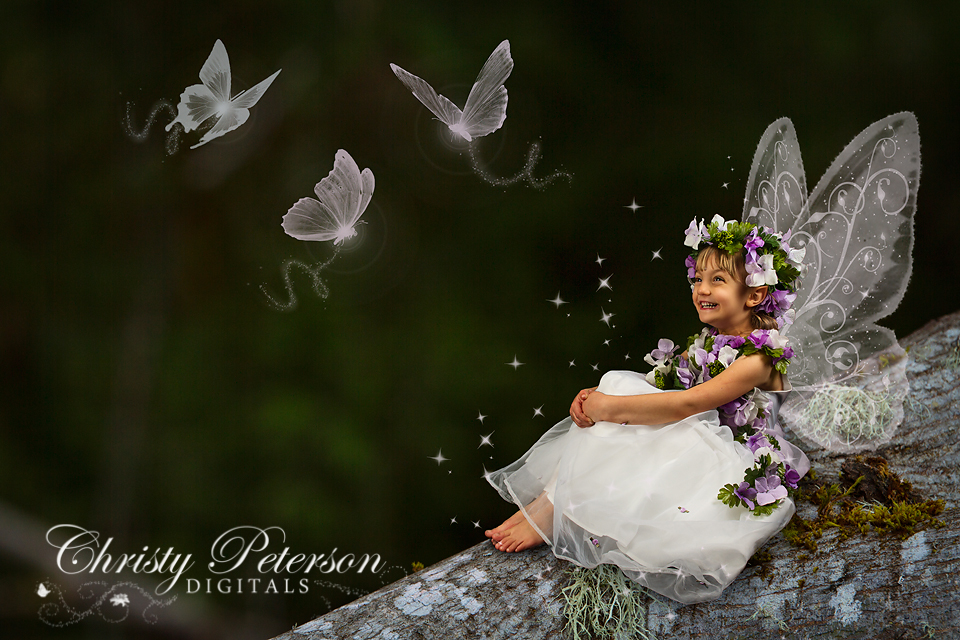 photoshop fairy wing brushes and overlays  more examples