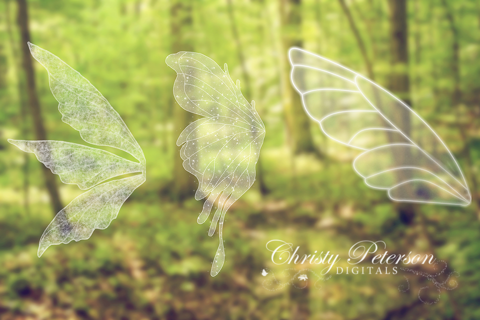 Fairy Wings PNG Digital Overlays Set 2 Christy Peterson