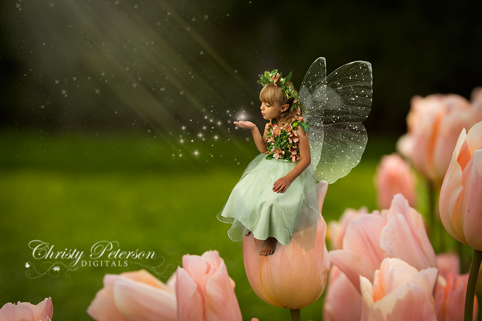 Fairies images Spring Fairy wallpaper and background