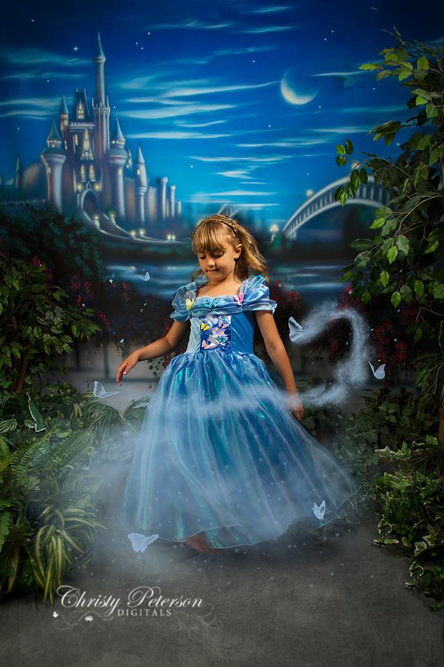 Cinderella In Frozen