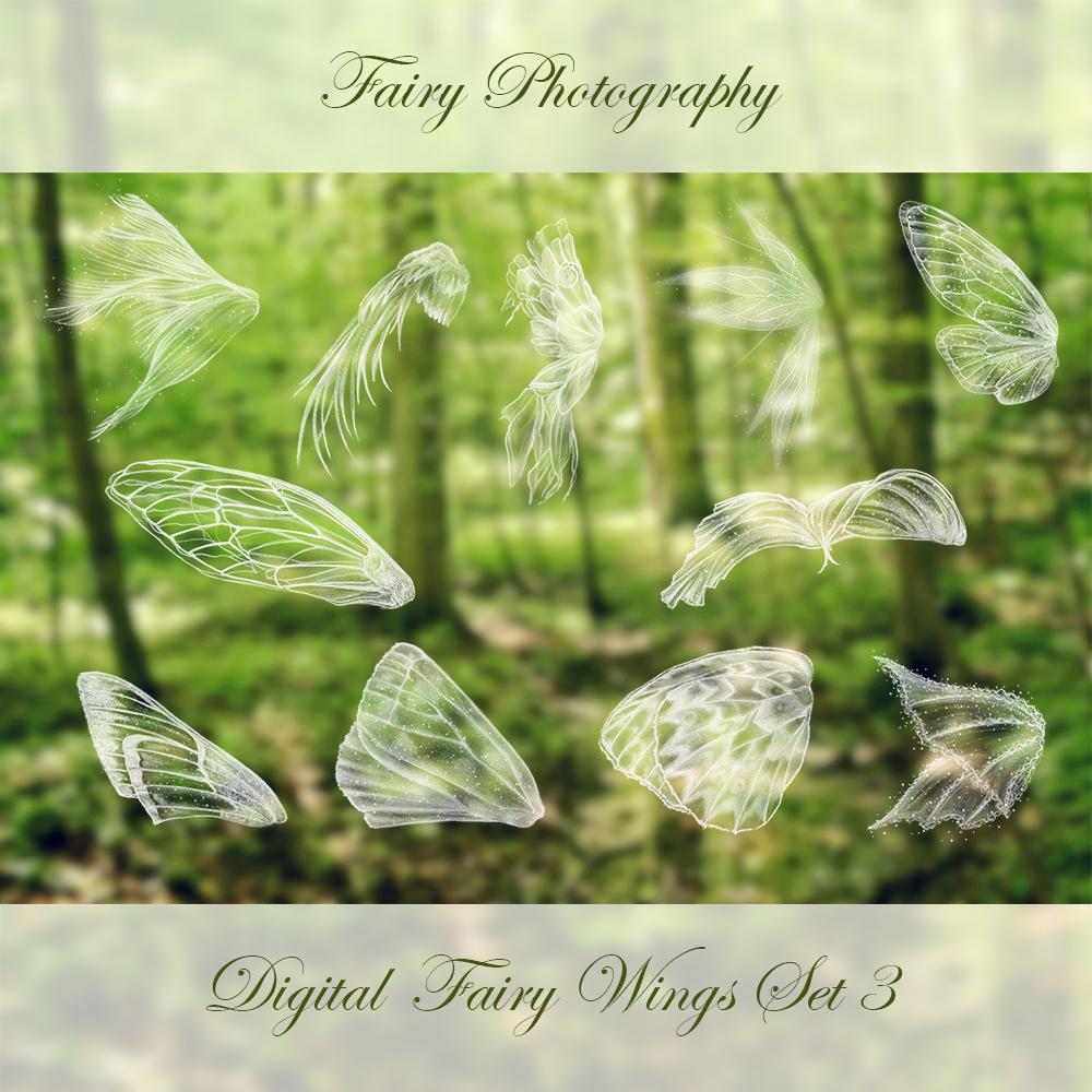 fairy wings photoshop brushes set 3