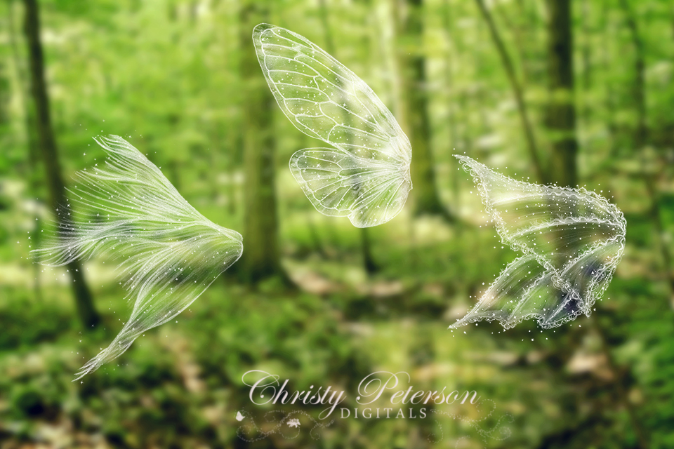 Fairy Wings Photoshop Brushes Set 3 Christy Peterson