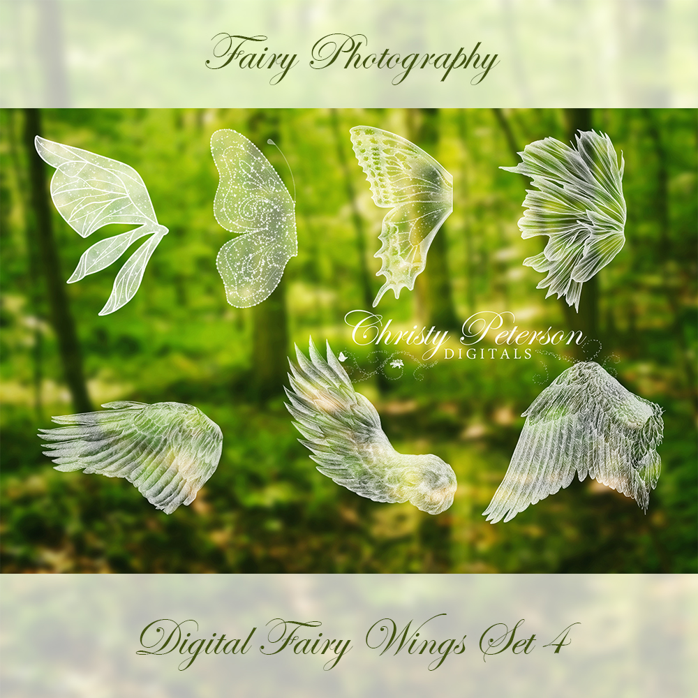 fairy wings photoshop brushes set 4